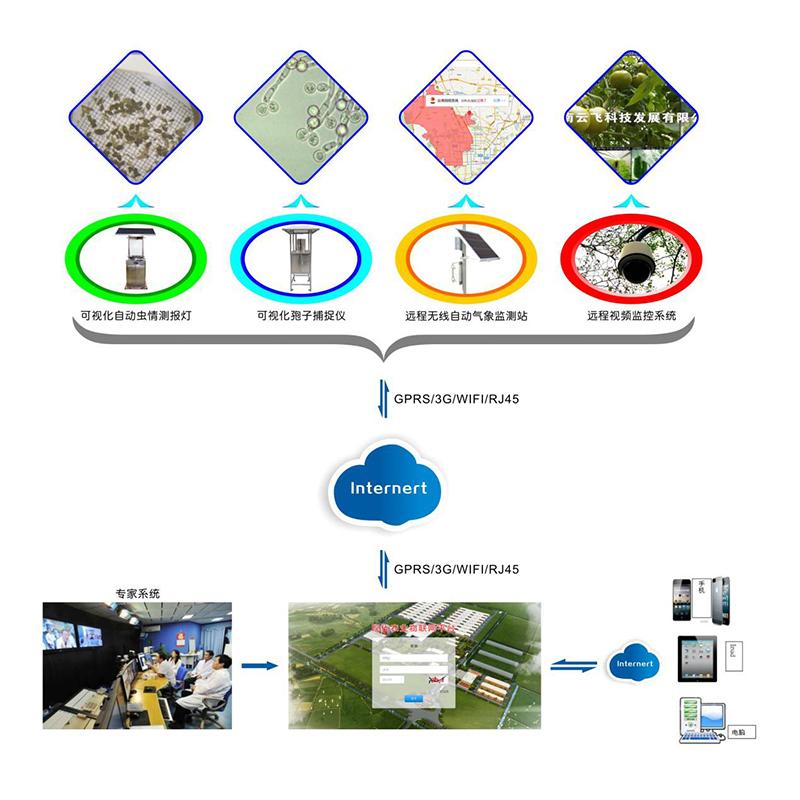 农林四情监测预警系统