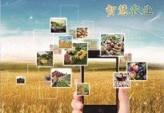 新型农业模式-智慧农业