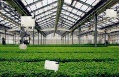 国家对农业物联网项目建设给予不同