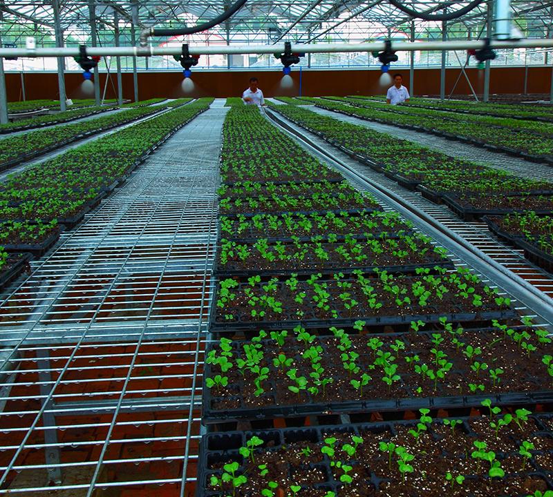 农田水肥一体化智能控制系统