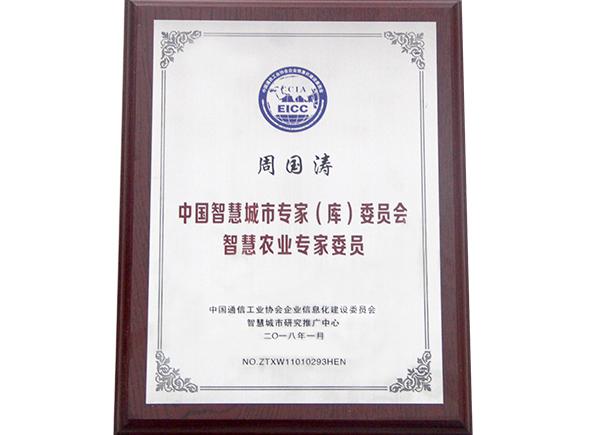 中国智慧城市专业(库)委员会智慧